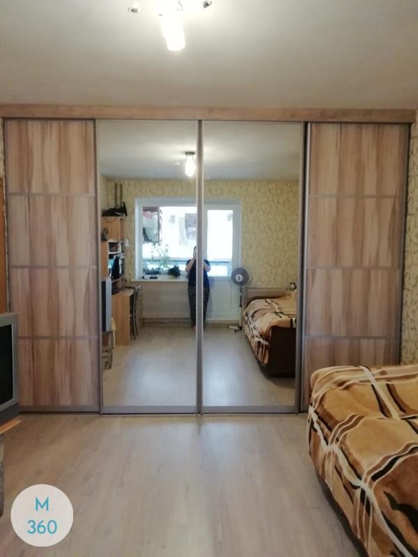 Встроенный шкаф Эдинбург Арт 003667332
