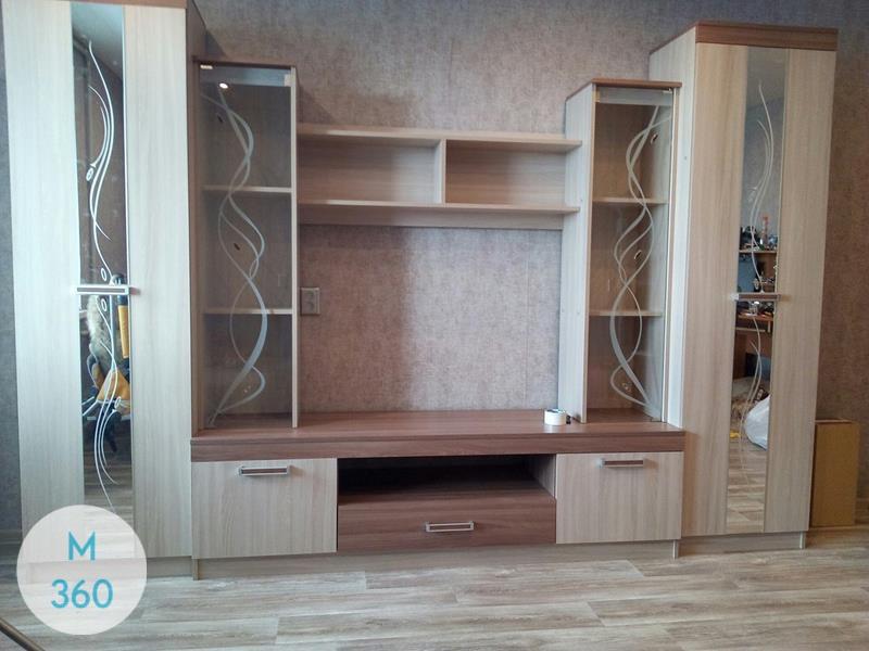 Встроенный шкаф с телевизором Патерсон Арт 006814515