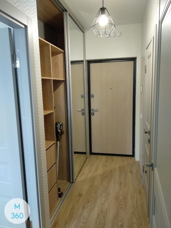 Встроенный шкаф в коридор Габон Арт 008350444